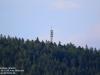 Sender Bad Wildbad (Enztal) am 16. August 2020
