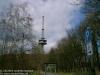 habichtswald11