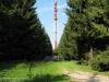 teutoburgerwald11