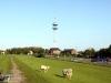 FMT Wedel-Schulau am 16. Mai 2010